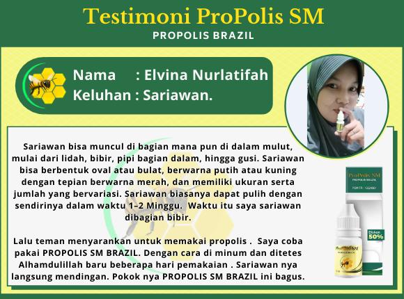 ELVINA-NURLATIFAH-SARIAWAN.png